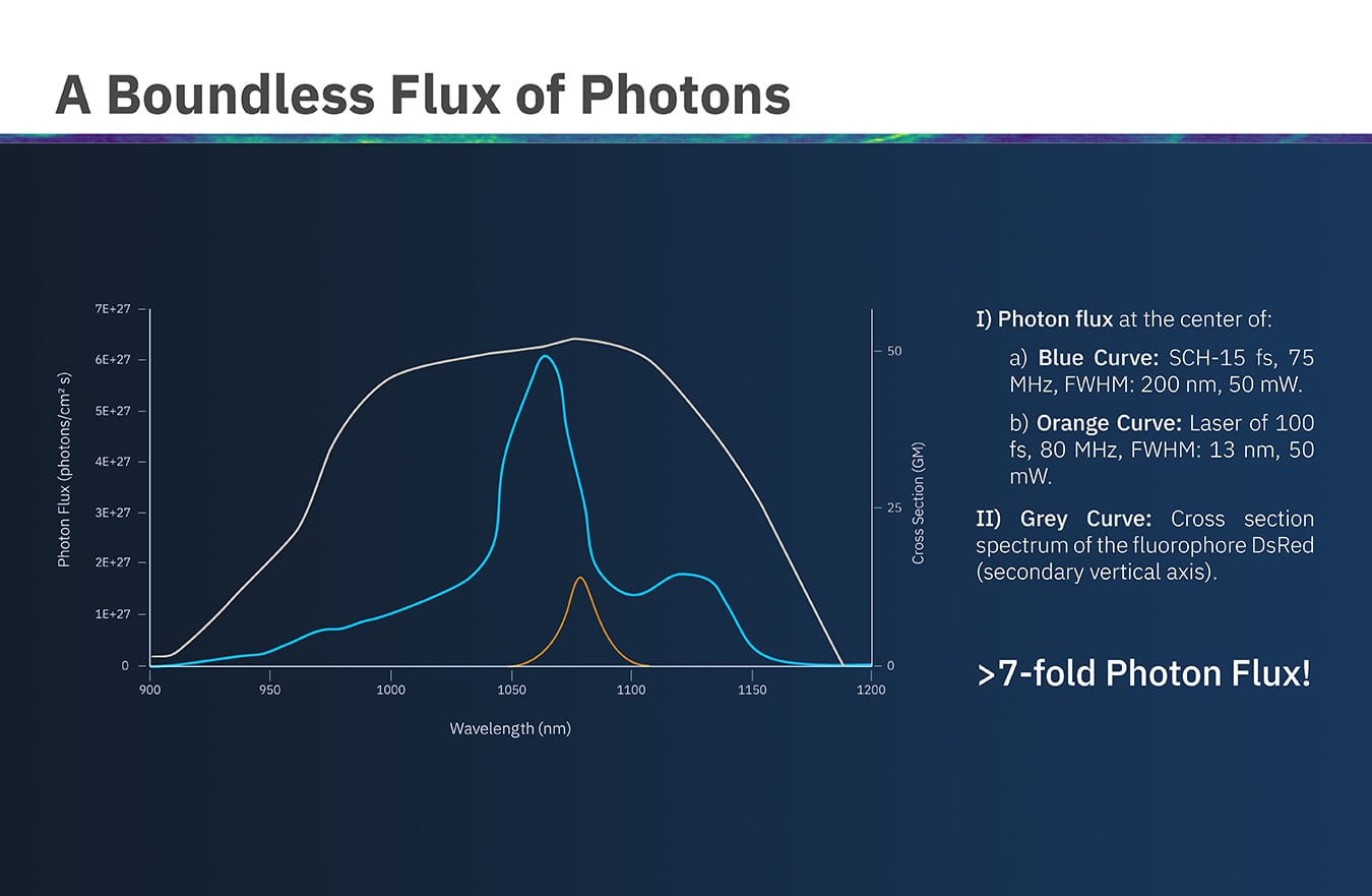 New Horizons in Two-Photon Microscopy